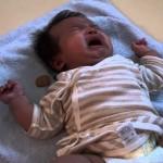 泣いている赤ちゃんをおやつであやすチワワ