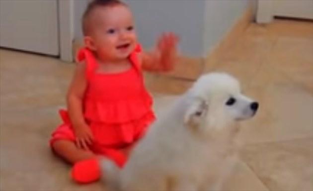 baby&dog_R