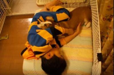 サークルで寝てしまう男の子と犬に癒やされます