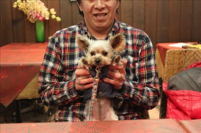 【平塚駅】愛犬と家庭的な味が楽しめるレストラン、ペット可「開化亭」【神奈川県平塚市】