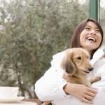週末のおでかけに! 愛犬と楽しめるレジャースポット5選