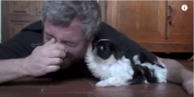 シーズー犬が可愛すぎてメロメロなお父さん