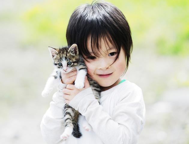 犬と猫では少し対応が違う!