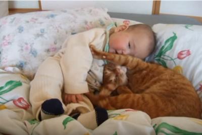 【ほのぼの】仲良く寄り添う赤ちゃんと猫