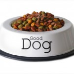 "Isolated dish of dog food with the words ""good dog""."