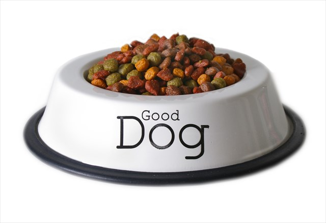 """Isolated dish of dog food with the words """"good dog""""."""