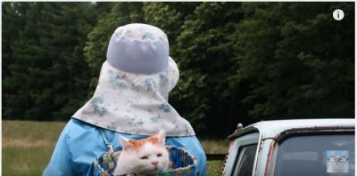 背負われた「かご猫」飼い主さんとお仕事?