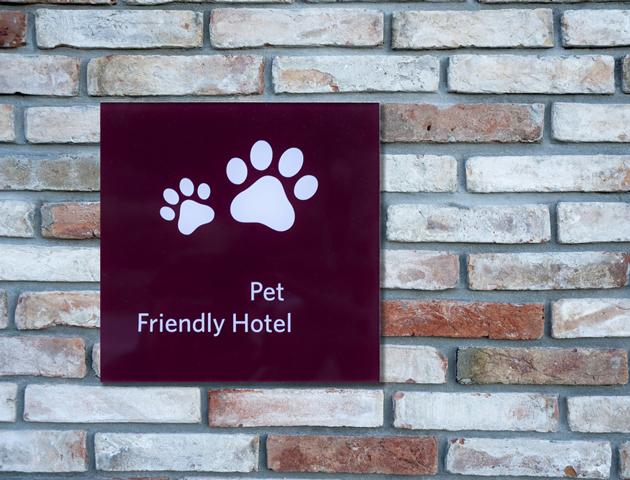 【年末年始】ペットをペットホテルに預けるときの注意点