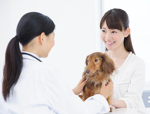 健康管理のためにも! 愛犬の動物病院嫌いを克服する方法