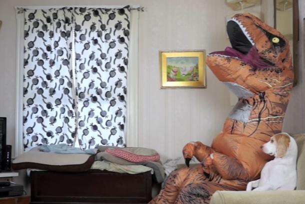 どんな姿でも大好き!恐竜と遊ぶ犬