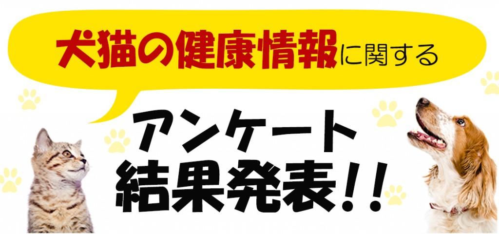 タイトル【3】20170906