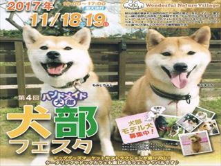 犬部フェスタ_R