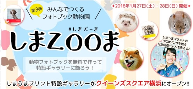 zoom_R